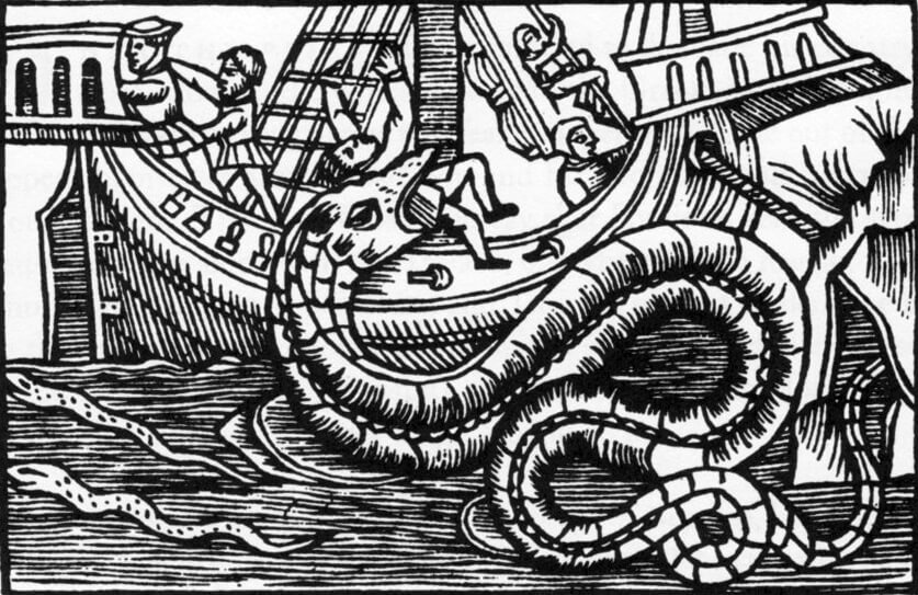What Is A Sea Serpent? What does a sea serpent look like?