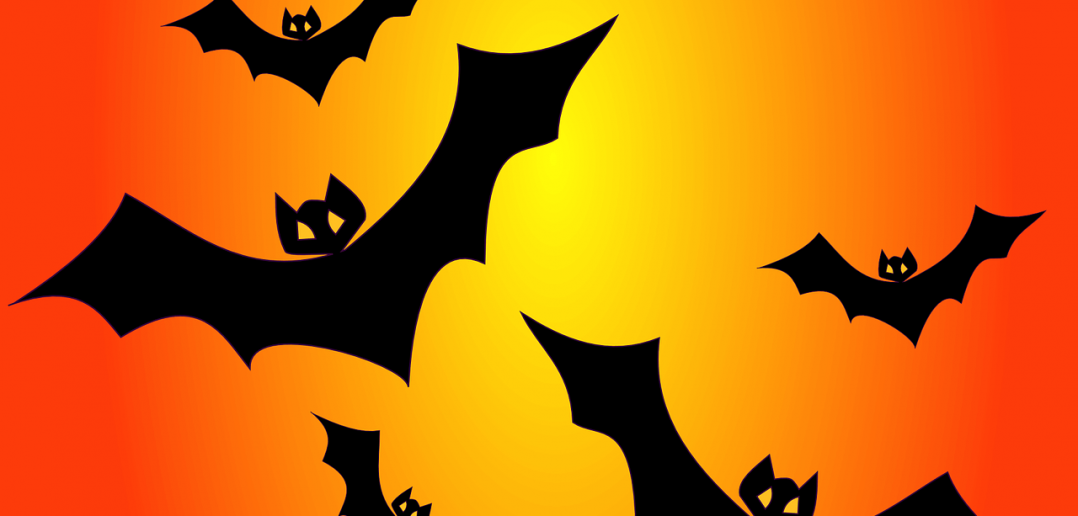 October 31 is Halloween every year. Creative Halloween messages to share with your loved ones on social media is the latest trend.