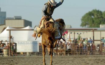 What is Rodeo? History Of Rodeo and Events