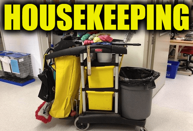 """Use Housekeeping in a Sentence - How to use """"Housekeeping"""" in a sentence"""
