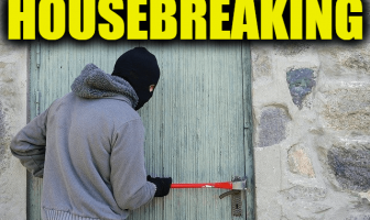 "Use Housebreaking in a Sentence - How to use ""Housebreaking"" in a sentence"