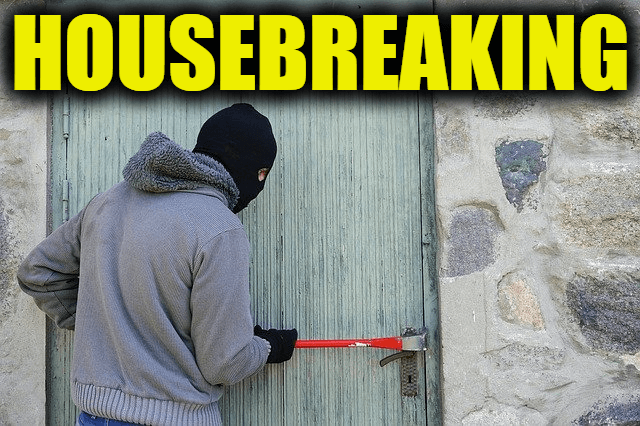"""Use Housebreaking in a Sentence - How to use """"Housebreaking"""" in a sentence"""