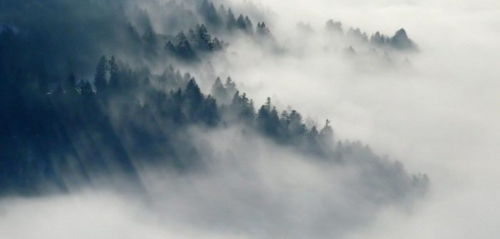 What makes fog and clouds?