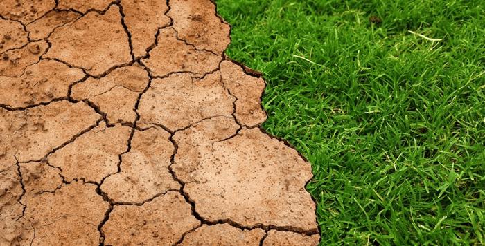 Soil Characteristics - Soil Horizons, Profiles and Texture