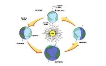 How Do Seasons Occur On Earth? What Causes the Seasons?