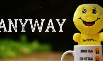 """Use Anyway in a Sentence - How to use """"Anyway"""" in a sentence"""