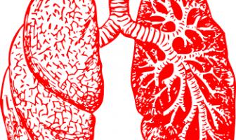 Bronchitis and Pneumonia In Children - Symptoms, Causes, Treatment
