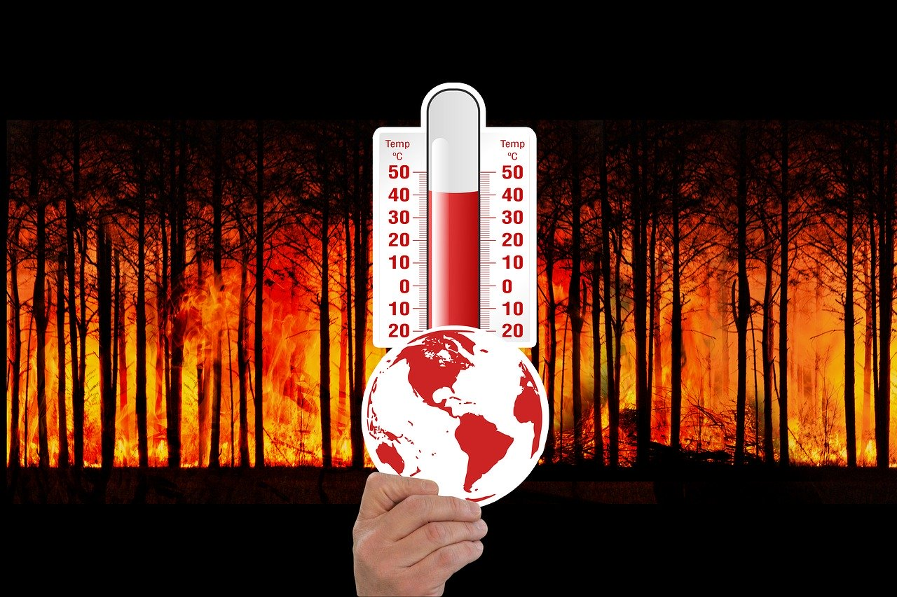 Why is Temperature Important For Life?
