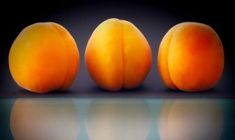 Information About Apricot Fruit - Characteristics, Growth Conditions, Types, Cultivated Forms