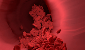 What is the definition of red blood cell? Information About Red Blood Cells