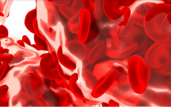 Function Of Hemoglobin - What is the definition of hemoglobin?