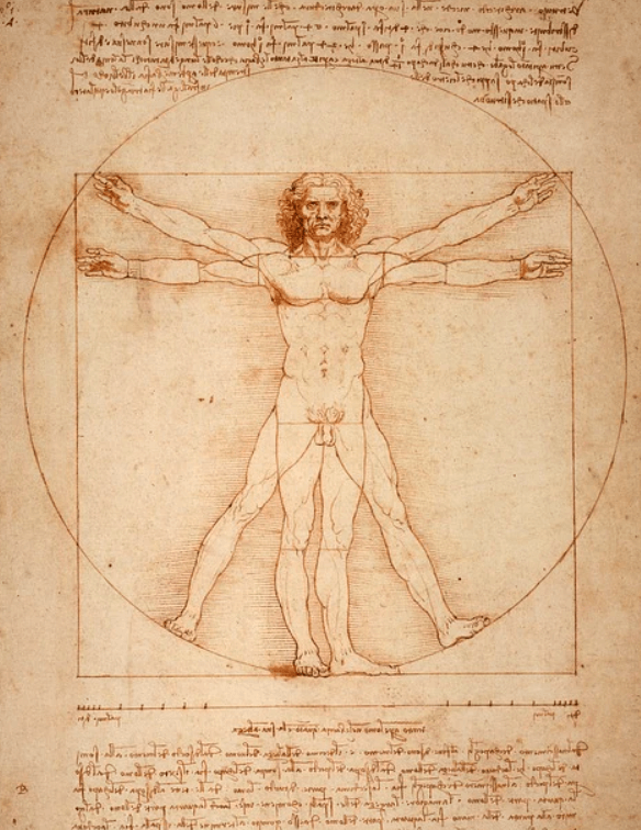 Leonardo Da Vinci Works and Thoughts - What did Leonardo Da Vinci do?