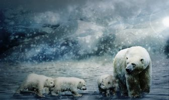 10 Characteristics Of Polar Climate - Classification of cold climates