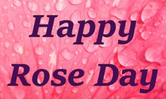 Rose Day Greetings Messages, Wishes For Wife and Husband