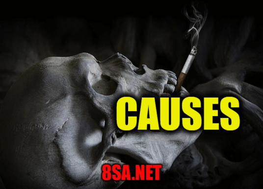 Causes in a Sentence