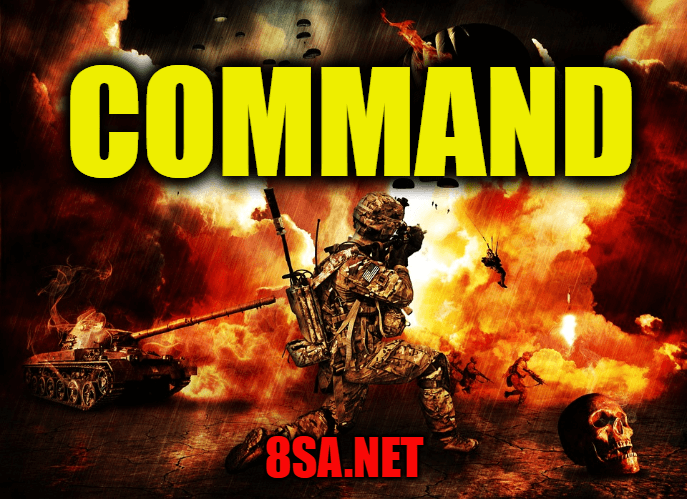 command in a sentence