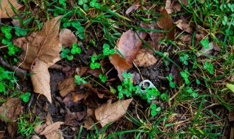 Soil Pollution and Its Effects On Human Health