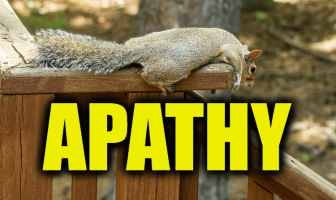 "Use Apathy in a Sentence - How to use ""Apathy"" in a sentence"