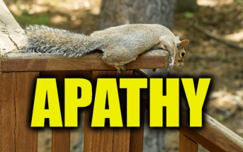 """Use Apathy in a Sentence - How to use """"Apathy"""" in a sentence"""