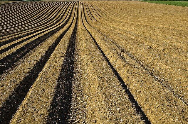 What is fertilization? How is The Soil Kept Fertile?