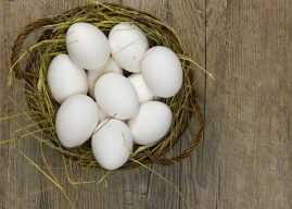National Egg Day – Activities and Why We Love National Egg Day