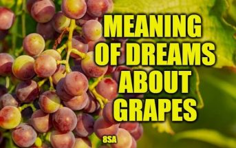 Meaning of Dreams About Grapes