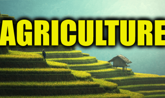 "Use Agriculture in a Sentence - How to use ""Agriculture"" in a sentence"