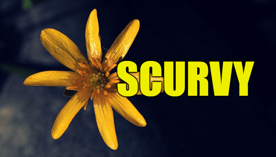 """Use Scurvy in a Sentence - How to use """"Scurvy"""" in a sentence"""