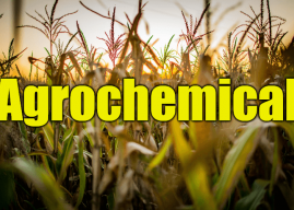 "Use Agrochemical in a Sentence – How to use ""Agrochemical"" in a sentence"