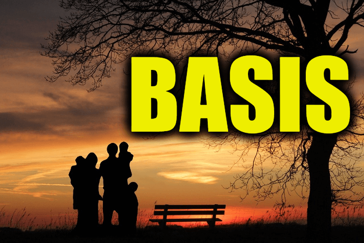 """Use Basis in a Sentence - How to use """"Basis"""" in a sentence"""