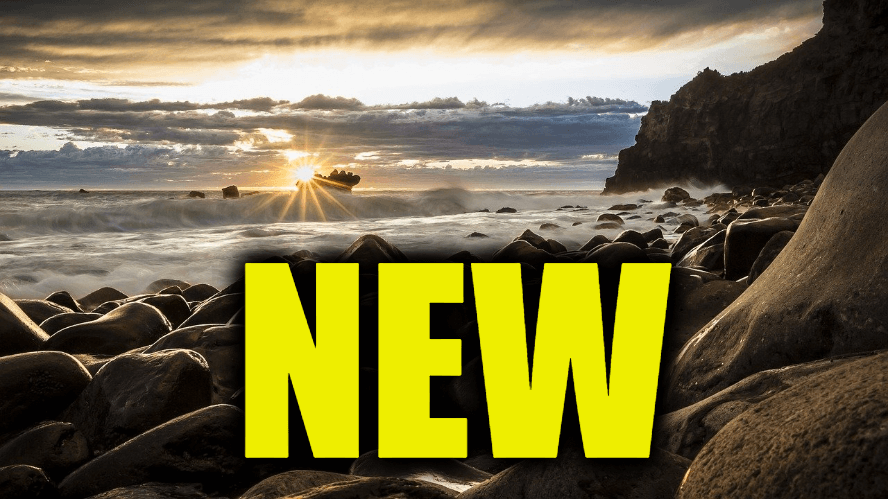 """Use New in a Sentence - How to use """"New"""" in a sentence"""