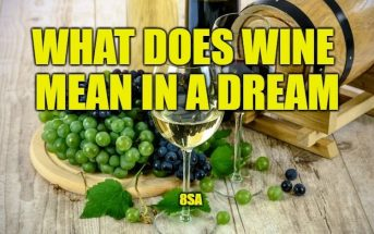 What Does Wine Mean In A Dream