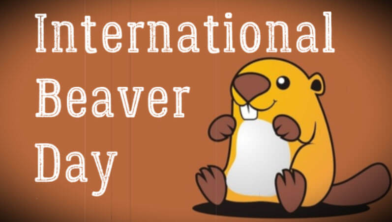 What is International Beaver Day - History and Why April 7?