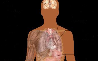 Acidosis: Symptoms, Diagnosis, Causes, and Treatment