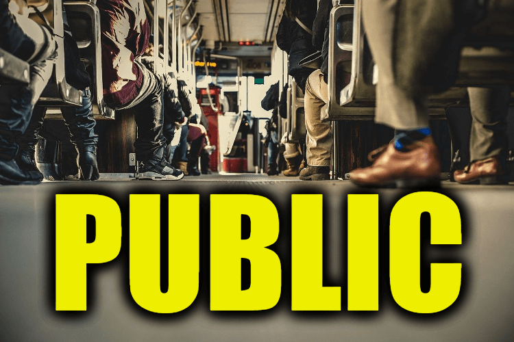 """Use Public in a Sentence - How to use """"Public"""" in a sentence"""