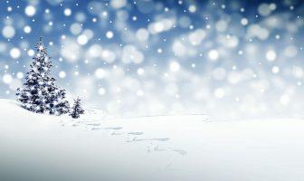Christmas and Snow (White Christmas and Snowmen)