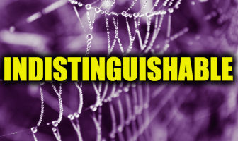 "Use Indistinguishable in a Sentence - How to use ""Indistinguishable"" in a sentence"