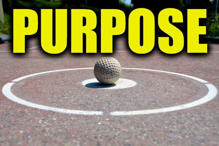 "Use Purpose in a Sentence - How to use ""Purpose"" in a sentence"