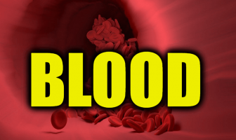 """Use Blood in a Sentence - How to use """"Blood"""" in a sentence"""