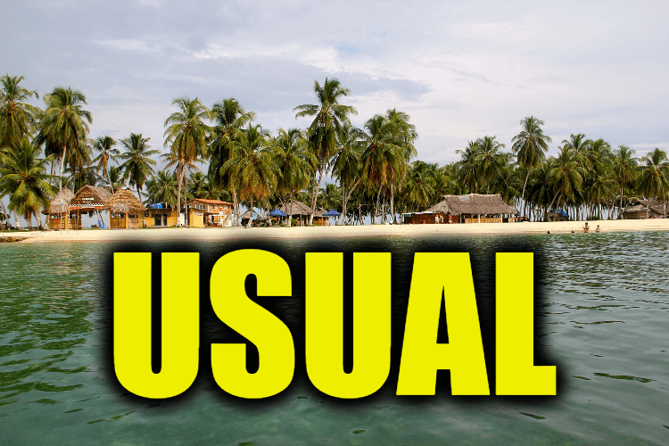 """Use Usual in a Sentence - How to use """"Usual"""" in a sentence"""