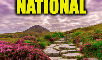"Use National in a Sentence - How to use ""National"" in a sentence"