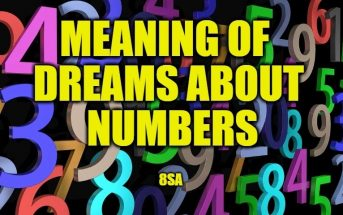 Meaning of Dreams About Numbers