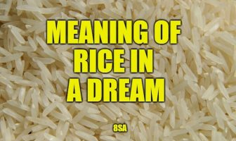 Meaning of Dreams About Rice