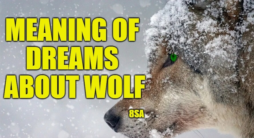 Dreams About Wolves