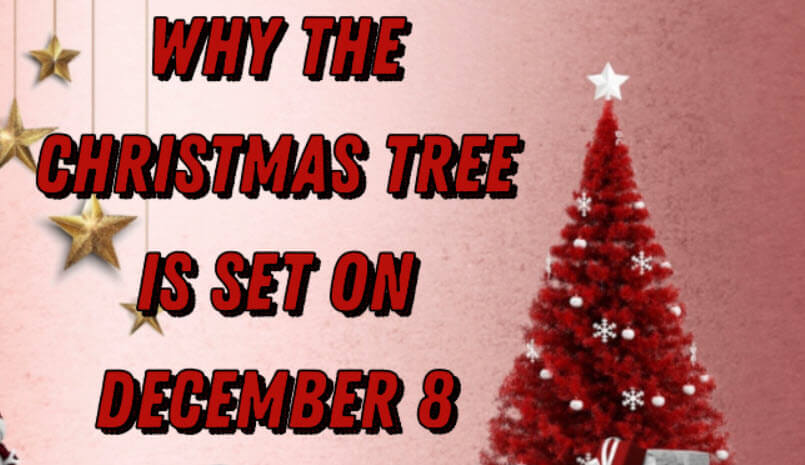 Why the Christmas tree is set on December 8