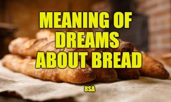 bread dream