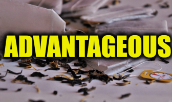 "Use Advantageous in a Sentence - How to use ""Advantageous"" in a sentence"
