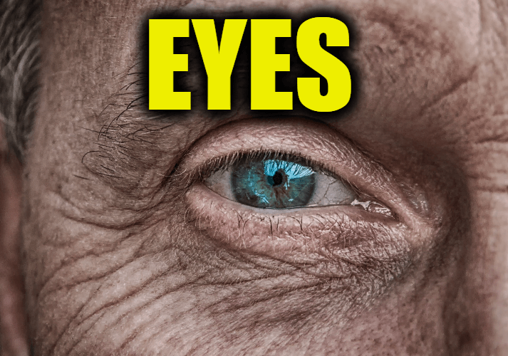 """Use Eyes in a Sentence - How to use """"Eyes"""" in a sentence"""