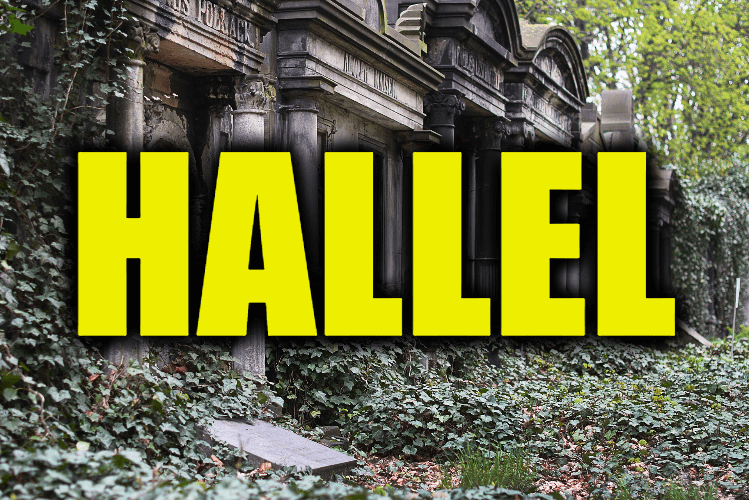 """Use Hallel in a Sentence - How to use """"Hallel"""" in a sentence"""