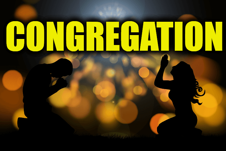 """Use Congregation in a Sentence - How to use """"Congregation"""" in a sentence"""